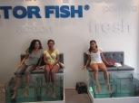 Doctor Fish Spa