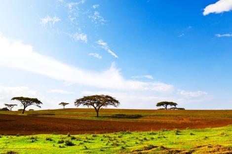 Ethiopia (shutterstock)