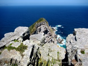 Top of Cape Point