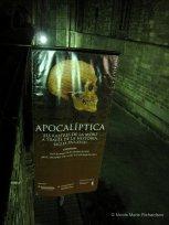 Apocaliptica