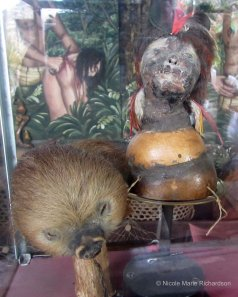 Shrunken human head (on the right)