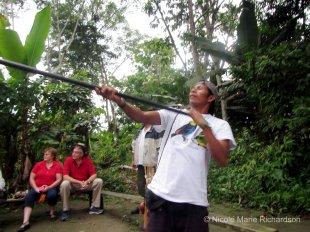 Aiming the blow gun