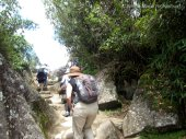 Climbing, lots of climbing