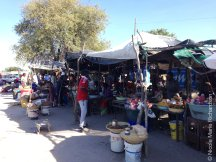 Amilema market